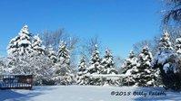 snow 2 c.jpg